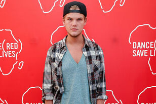 Avicii's Family Implies The DJ Died From Suicide: Read Their New Statement