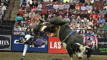 Photos - PBR: Professional Bull Riders at Nationwide Arena