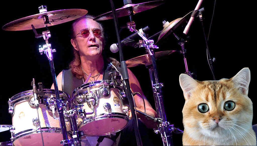 Foghat's Roger Earl Recalls Late-Bassist Befriending Stray Kitten on Tour