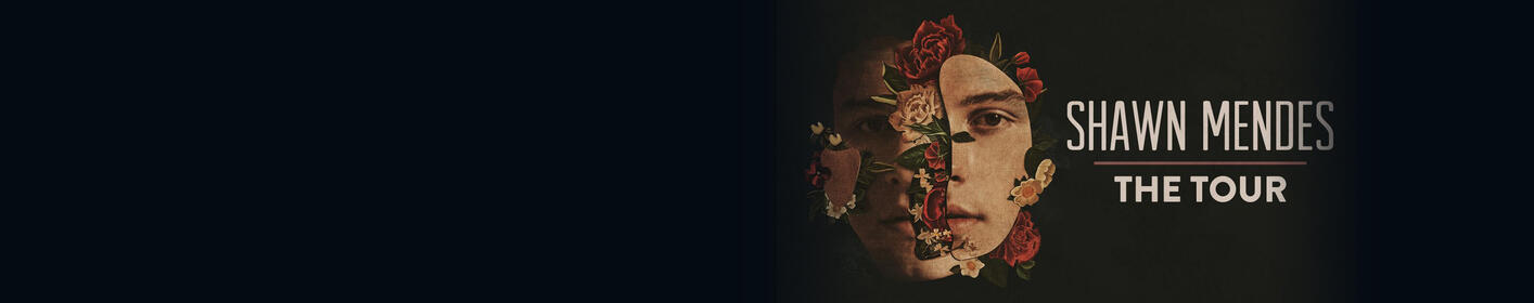 Shawn Mendes The Tour