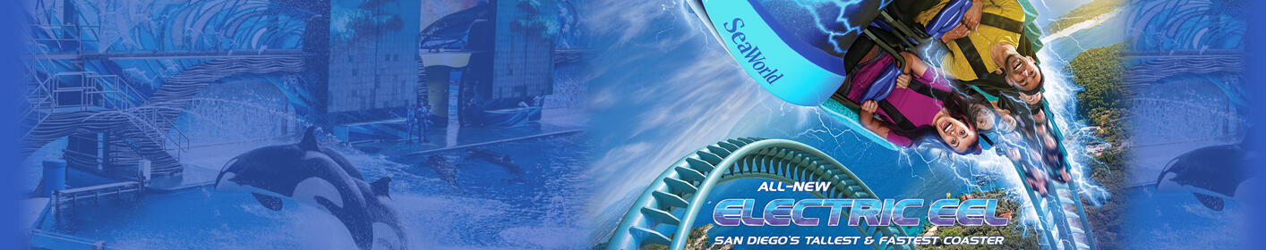 Win Tickets To See Shamu At Sea World San Diego!