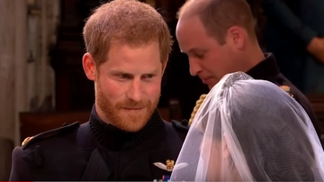 Scott Dooley - The Royal Wedding Bad Lip Reading