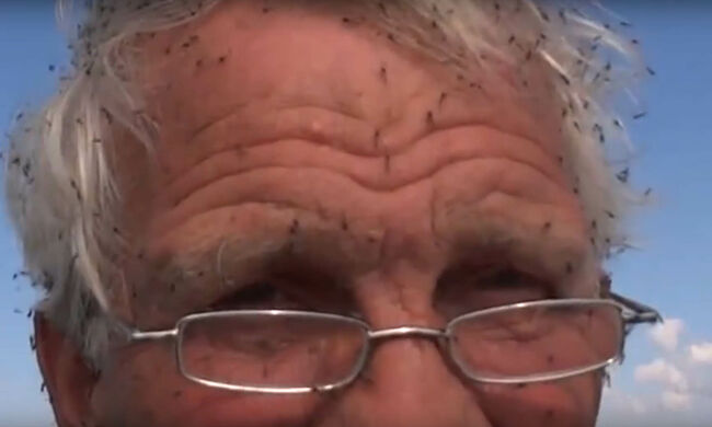 Not just a U.S. problem, black flies swarm a man in Iceland. YouTube