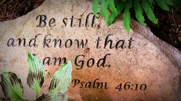 Daily Bible Verse - Philippians 2:5 (NLT)