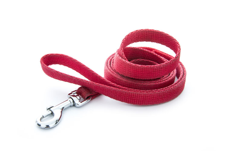 Leash Getty RF