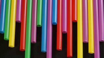 Mel Andrews - Paper straws to replace plastic?