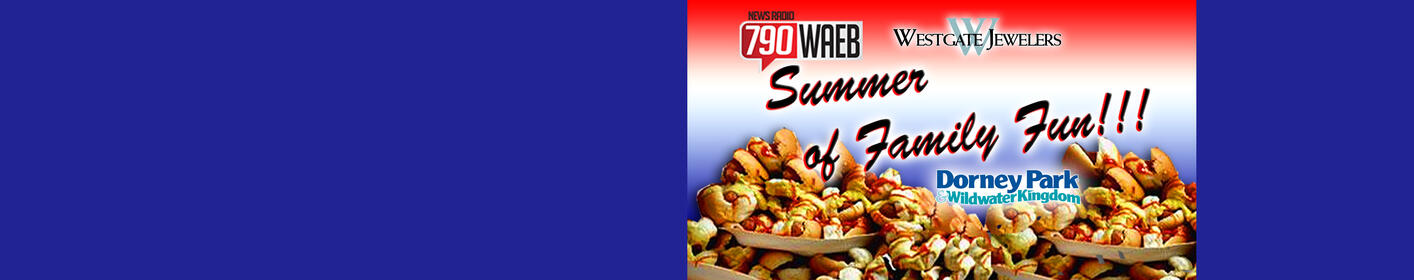 This week's SUMMER OF FUN PRIZE: TICKETS to see the BEACH BOYS!