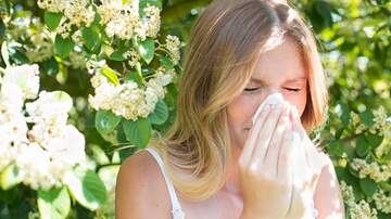 The Justin Brady Show - Why Are People Lying About Their Allergies To Get Out Of Work?