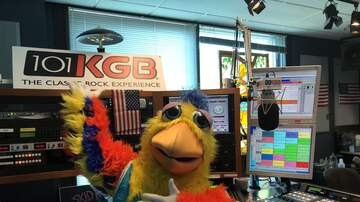 Artist & Celebrity Interviews - The San Diego Chicken Flies Home to KGB [PHOTOS & VIDEOS]