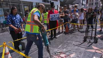 Lizette Love - Mayor Of West Hollywood Working To Remove Trump's Star PERMANENTLY