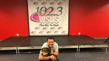 Steve Allan Pet of the Week - Meet Bruno, My Pet Of The Week!