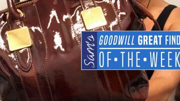 Sam - Sam's Goodwill Great Find Of The Week: Rachel Zoe Purse