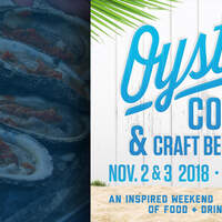 95 KSJ Welcomes Michael Ray to the 2018 Hangout Oyster Cook Off