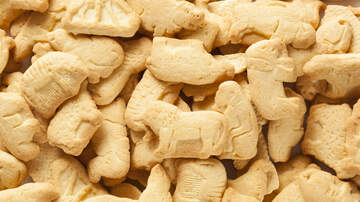 ICYMI News - Nabisco Changes Classic Animal Crackers Packaging