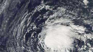 Jeff Collins - Hurricane Florence