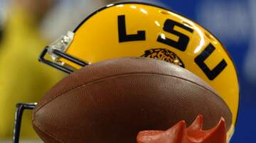 97.3 The Game News - LSU Fans Eating Gator?