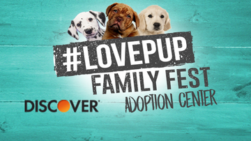 Love Pup Family Fest - Discover the Happy Tails of #LovePup adoptions