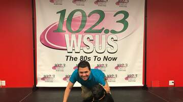 Steve Allan Pet of the Week - Meet Donna, My Adorable Adopt A Pet Of The Week!