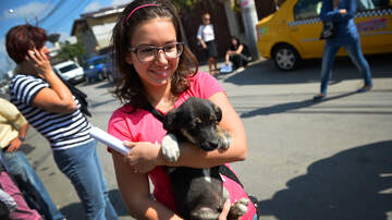 Theresa Lucas - Empty The Shelters Day is October 6