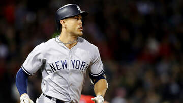 BJ The Web Guy - Giancarlo Stanton's Response to Getting Hit With Ball By Fan Is Epic