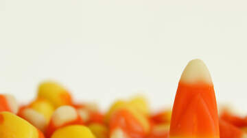 Sam Kelly - Candy Corn as a pizza topping? The internet has some things to say!