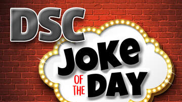Funny Jokes Joke of the Day - Maybe Try Smarter Friends Next Time [DSC Joke of The Day]
