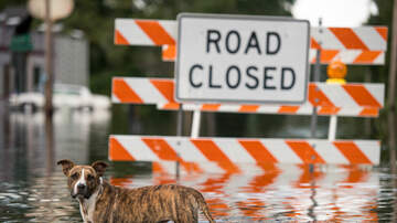 The Joe Pags Show - Michael brings flooding across Florida, the Carolinas and Virginia