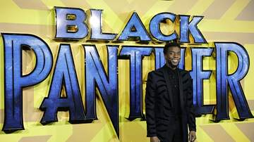 Mimi Brown - Black Panther The Sequel?! Are You Ready to Go Back to Wakanda?