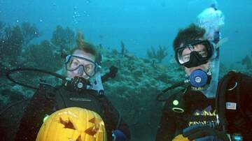 Temple - Underwater Pumpkin Carving Annual Event