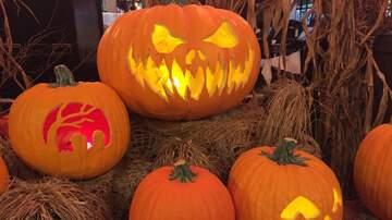 Tara - Halloween Is Getting Wicked