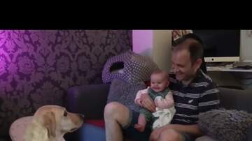 Jim Show - Baby Laughing Hysterically at Doggo
