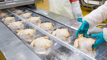 National News - Drug-Resistant Salmonella Outbreak Spreads To 29 States