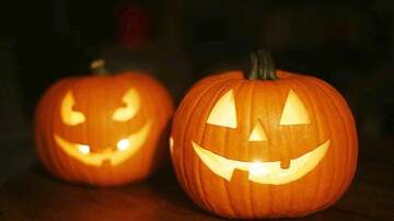 Julie's - What To Do With Pumpkin Guts And Jack-O'-Lanterns After Halloween
