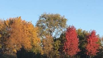 - Last chance for glimpse of Iowa fall colors this weekend