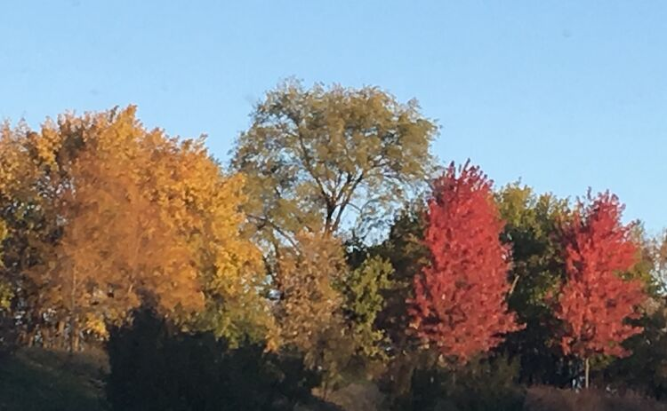 Still some beautiful fall colors along I-35 between Des Moines and Ames Saturday morning. Photo by Wendy Wilde
