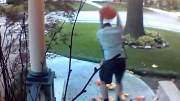 National News - Video Captures Man Smashing Pumpkins In Broad Daylight
