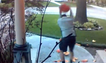 National News - Video Captures Man Smashing Pumpkins In Broad Daylight