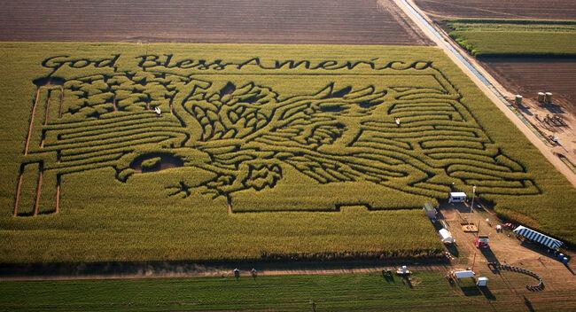 Patriotic Corn Maze in Colorado