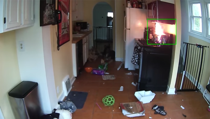 Video Shows Dog Turning On Stove, Starting Fire, Nearly Burning Down House
