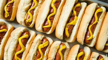 Lady La - Oscar Mayer Officially Declares That Hot Dogs Are Sandwiches