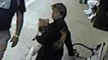 None - Woman Caught On Camera Stealing Veteran's Service Dog