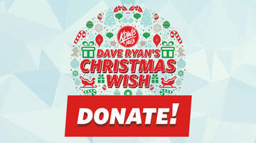 Dave Ryan's Christmas Wish - DONATE: Make a Donation to Christmas Wish 2018