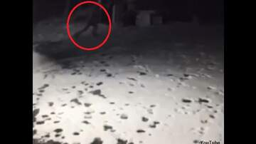 Coast to Coast AM with George Noory - Watch: Eerie Figure Spotted by Security Camera