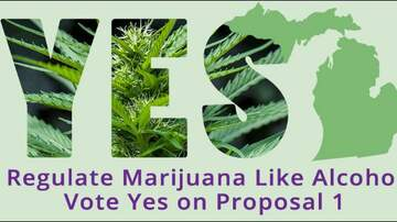 The Insider - When is marijuana legal in Michigan? What to know about passage of Prop. 1