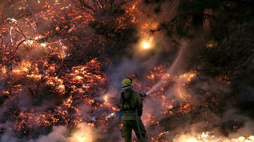 Trending in The Bay - Here's How You Can Help Victims Of The California Wildfires!