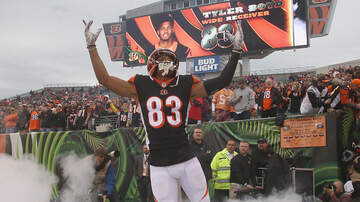 Mo Egger - Blog Of Football Guesses: The Bengals Actually Are Having A Good Year.