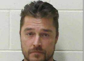 Keri Noble in the Morning - 'Bachelor' Chris Soules Pleads Guilty to Hit and Run Death