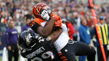 James Rapien - 'Huey Lewis and the Bengals' fall to the Ravens 24-21