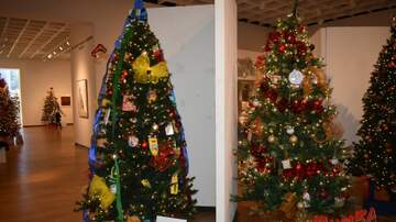 Photos - Festival of Trees con Jessi D