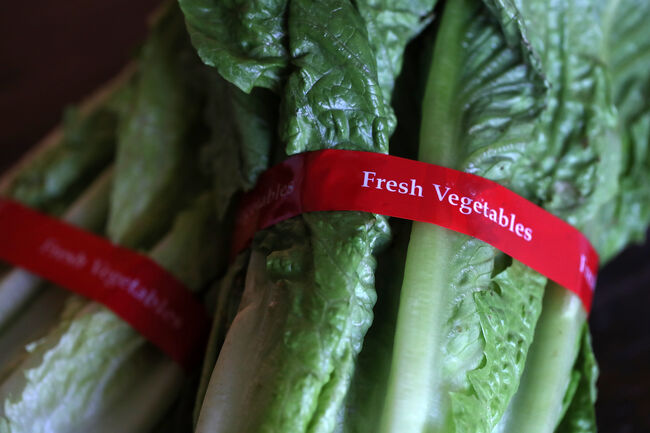 CDC warns consumers to throw away romaine lettuce